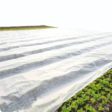 Agriculture cover White 100% pp non woven fabric use Agricultural protect
