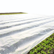 Nonwoven agriculture cover Uv Pp Spunbonded Nonwoven Fabric for Agriculture
