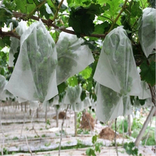 Good Quality low price fruit protection bags 100% PP spunbond non woven fabric for agriculture